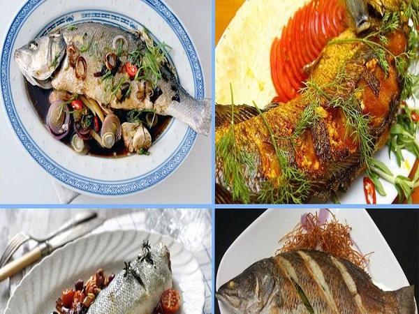 Đặc tính của cá vược tươi