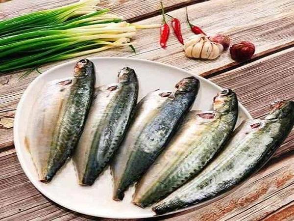 Đặc tính cá bạc má tươi ngon