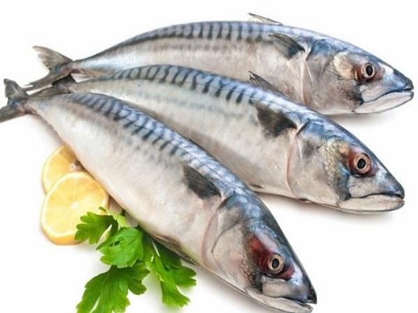 Giá trị dinh dưỡng của cá nục