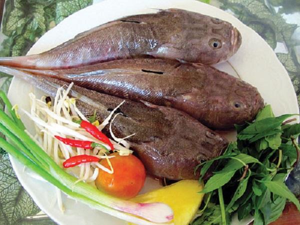 Giá trị dinh dưỡng của cá mú tươi