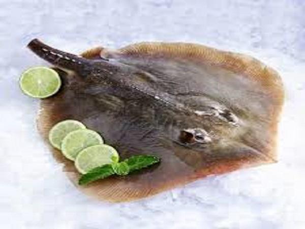 Cá đuối tươi có giá trị dinh dưỡng ra sao với sức khỏe của con người?