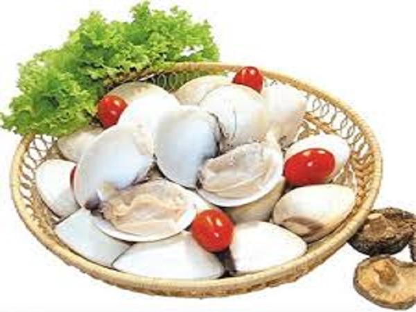 Giá trị dinh dưỡng của ngao trắng