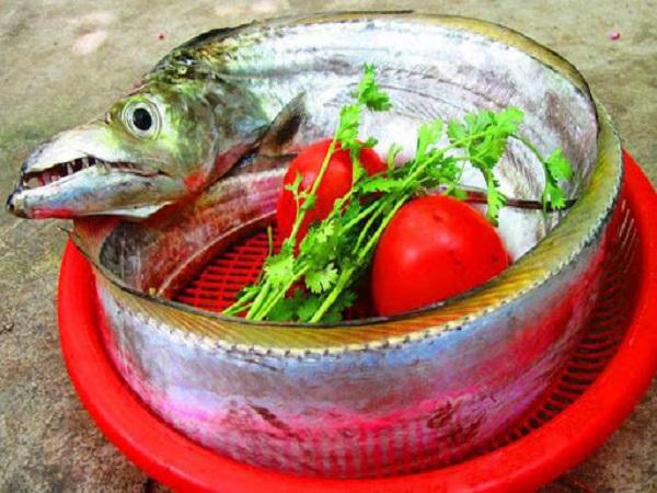 Cá hố có giá trị dinh dưỡng gì?