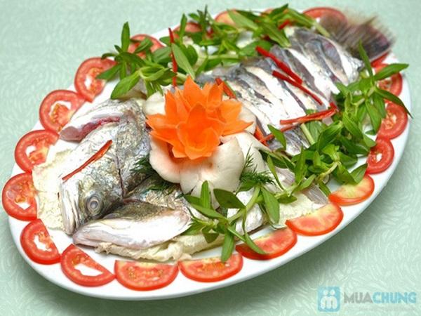 Cá vược trắng là cá gì? giá trị dinh dưỡng ra sao? mua ở đâu Hà Nội?