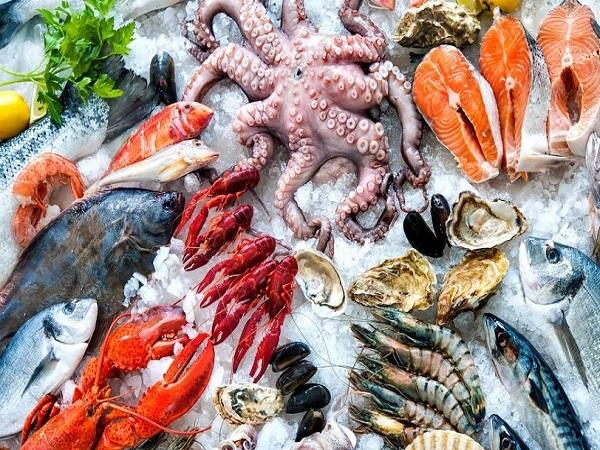 Tại sao phải có kinh nghiệm lựa chọn hải sản tươi sống