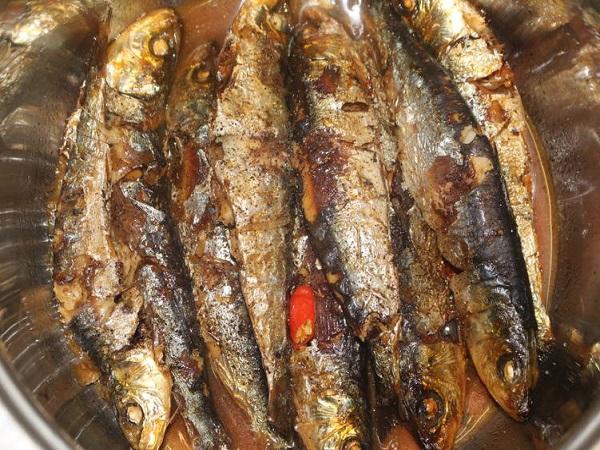 Địa chỉ bán cá trích tươi ở Hà Nội uy tín, giá rẻ