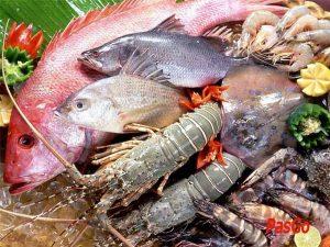 Tư vấn địa chỉ bán hải sản tươi sống tại Hà Nội uy tín