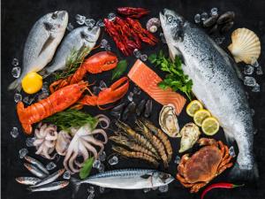 Giá hải sản tươi sống tại Hà Nội dao động như thế nào?